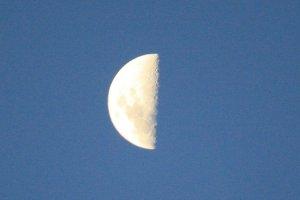 moon.jpg by eccles