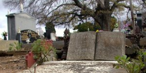 grave_tree01.jpg by eccles