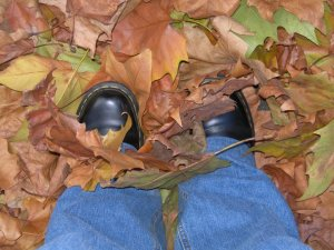 Feet in leaves by orca